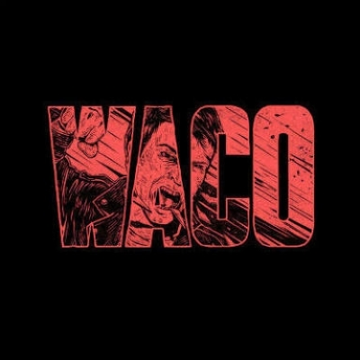 DISCO DE VINIL NOVO - VIOLENT SOHO - WACO LP