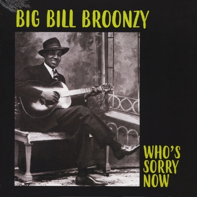 Disco de vinil novo - Big Bill Broonzy - Who´s Sorry Now LP 180 g