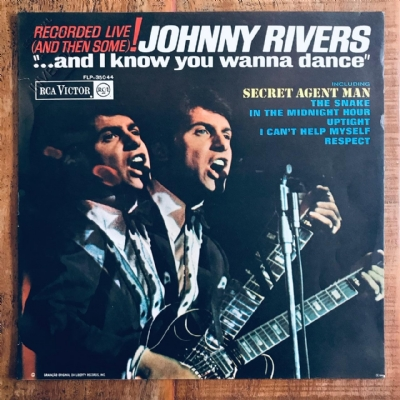 Disco De Vinil Usado - Johnny Rivers - ...And I Know You Wanna Dance Lp