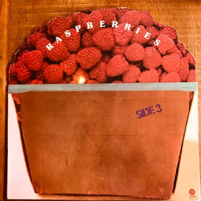 Disco De Vinil Usado - Raspberries - Side 3 Lp