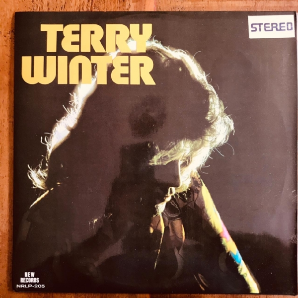 Disco De Vinil Usado - Terry Winter - Terry Winter Lp