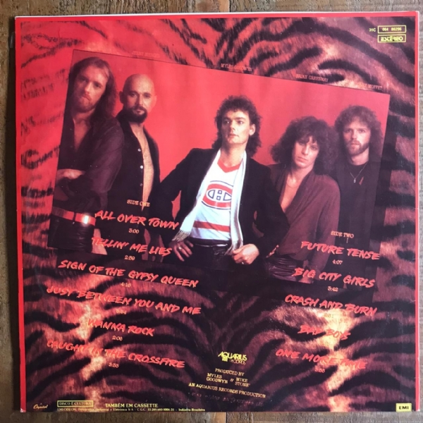 Disco de vinil usado - April Wine - The Nature Of The Beast LP IMG-1576022