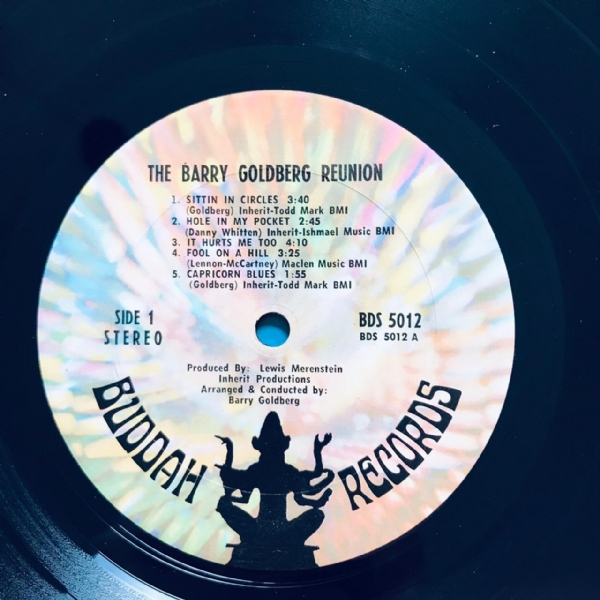 Disco De Vinil Usado - The Barry Goldberg Reunion - There´s No Hole In My Soul Lp IMG-1870308