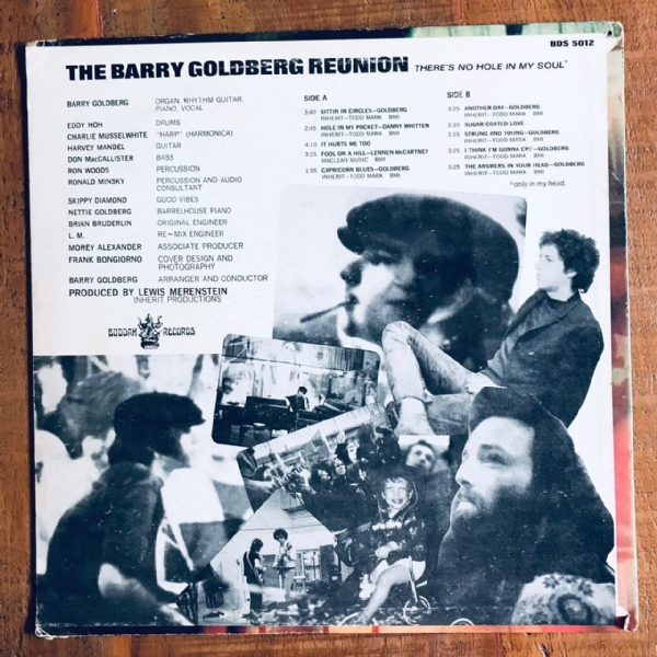 Disco De Vinil Usado - The Barry Goldberg Reunion - There´s No Hole In My Soul Lp IMG-1870309